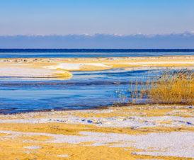 Зимний пейзаж возле Арабатки