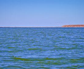 Остров Папанин